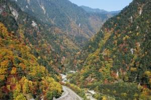 信州高瀬渓谷の紅葉