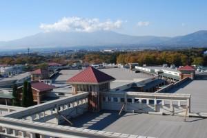 晩秋の富士山です