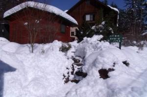 何十年ぶりかの大雪!